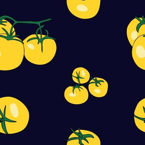 Yellow tomatoes on navy-blue