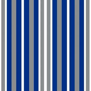 Memphis Tigers Blue White Gray Stripes Team School Colors