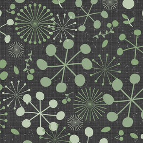 Allium Allure, Charcoal Gray