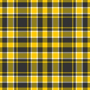 Appalachia State Mountaineers School Team Color Plaid Yellow Black White