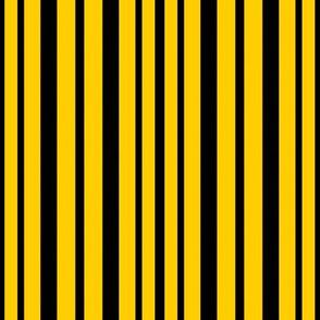 Iowa Hawkeyes Yellow Black Stripes School Team Colors