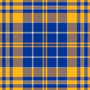Pittsburgh Panthers Plaid  Blue Yellow White School Team Colors