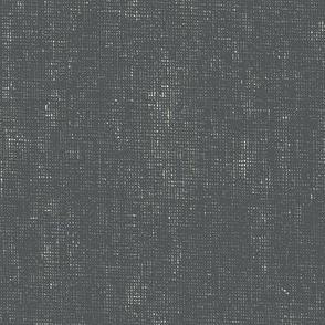 Stonewashed Solid - Slate