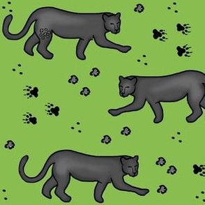 Panther Prowl / Cat / Green