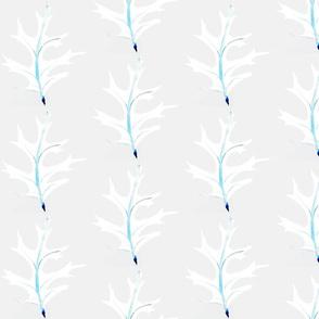 White Oak 6 Inch