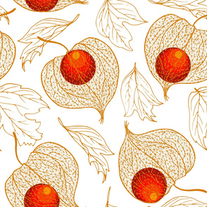 Cape gooseberries and autumn leaves