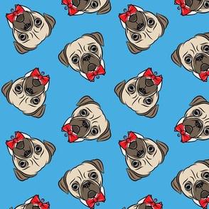 Formal Pug - pug with bowties - blue - LAD19