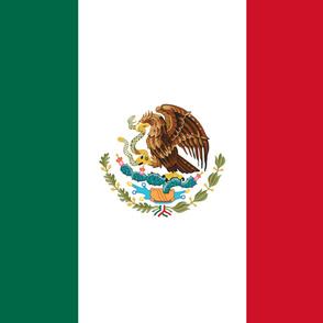 Mexico flag, yard