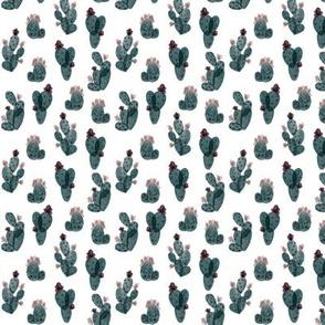 spruce autumn cactus // micro