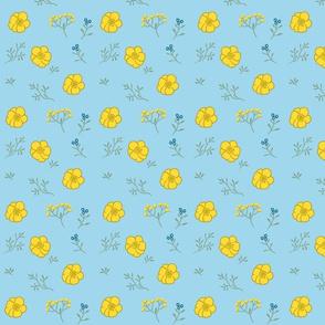 Buttercup Fields-- Blue