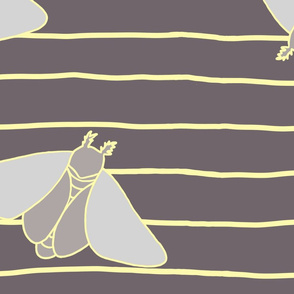 Darker Neutral Moth Jumbo