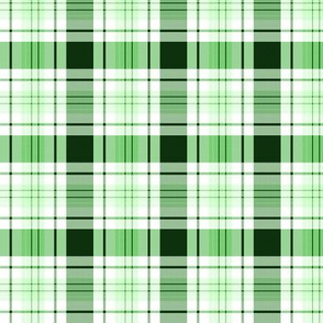 Christmas TARTAN | Green White Plaid |Renee Davis