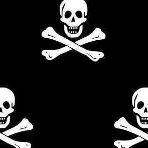 Edward England Jolly Roger Pirate Flag