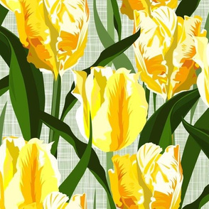yellow tulip field - large