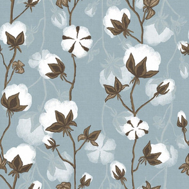 Cotton pods