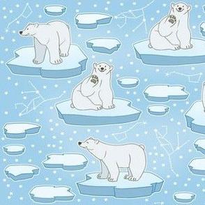 Polar Bears on Polar Caps