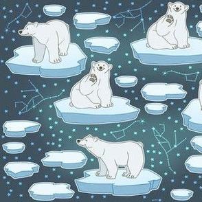 Dark Polar Bears on Polar Caps