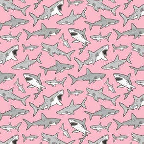 Sharks Shark Grey on Pink Smaller