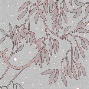 starlight dreams silver coral