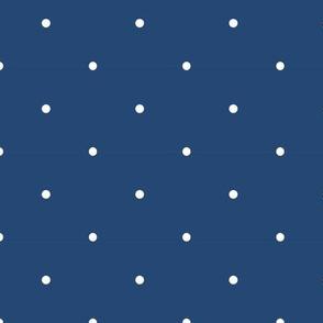 Navy & White Pin Dot