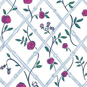 Climbing Roses (blue)