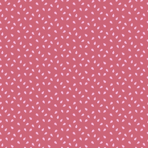 Pink Pumpkin Seed | Renee Davis