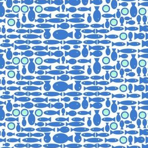 Here fishy fishy - school of fish non directional in blue