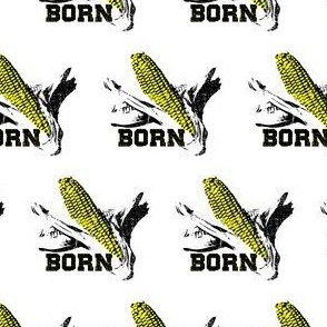 Nebraska fabric - born in NE - corn born - Cornhusker