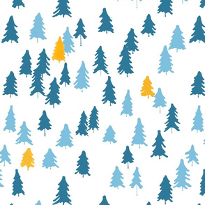 blue spruce forest