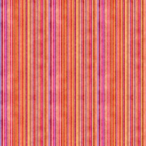 Stonewashed Multicolored stripe, autumn