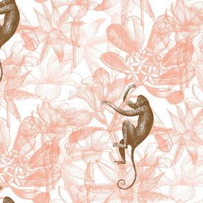 monkey flowers blush