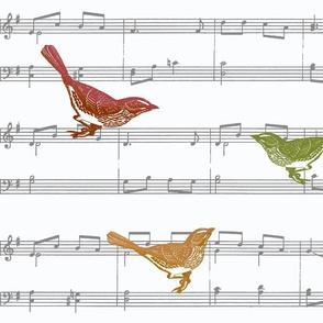 Songbirds - fall