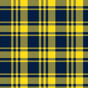 Plaid- navy and yellow - C19BS