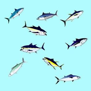 9 Tuna Scatter on ligth blue