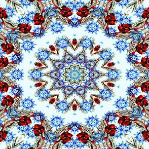 Kaleidoscope of Snowflakes