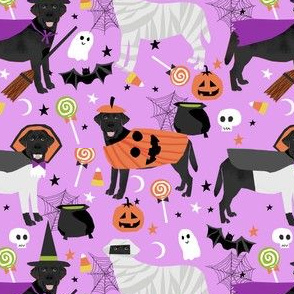 black lab halloween fabric - dog halloween fabric, dog costume, black labrador -  light purple