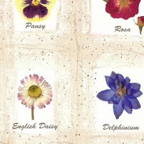 Botanical Cheater Quilt
