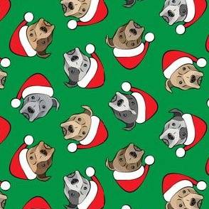 (small scale) All the pit bulls - Santa hats - Christmas Dog (green) C19BS