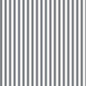 Ticking Stripe in Slate