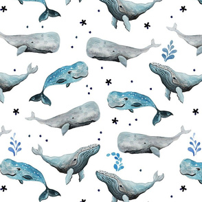 Swimming Whales White Ground (Medium Scale)