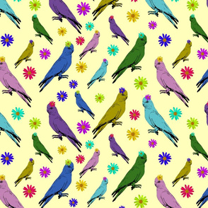 Galahs on Holiday! - lemon sherbert, large