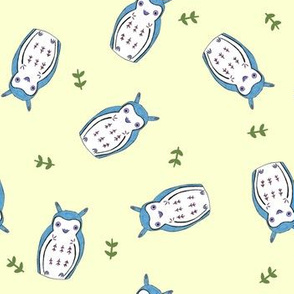 Aka-Fukurou (cream and blue)