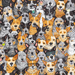 All The Cattle Dogs