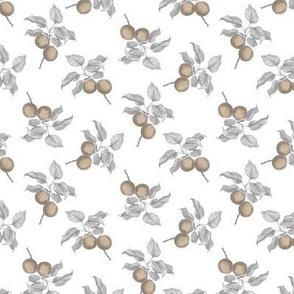 small fruit white