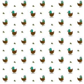 Ducks and grass