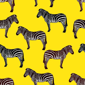 Zebra (yellow)