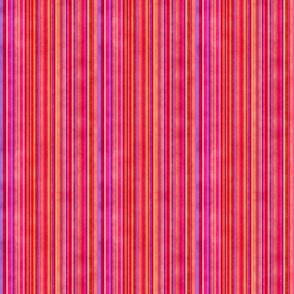 Stonewashed Multicolored stripe, reds