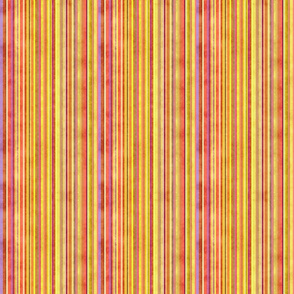 Stonewashed Multicolored stripe, yellows