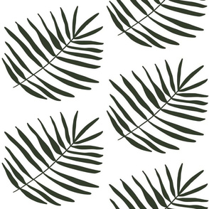 Dark Green Tropical Palm Fan Leaf