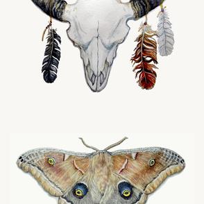 Decorated Buffalo Skull And Moth Pillows